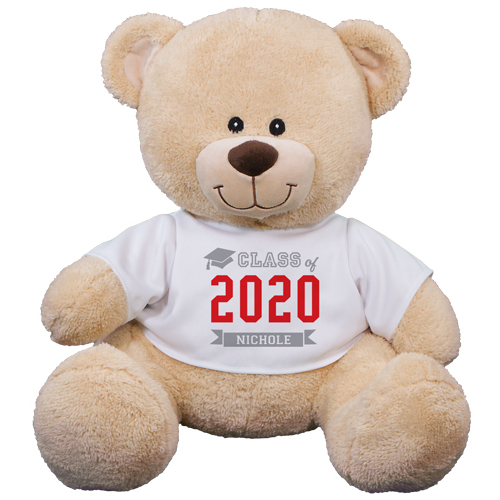 Class Of Teddy Bear 8B83102329X