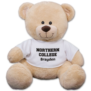 School Spirit Teddy Bear