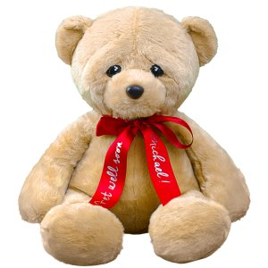Personalized Get Well woe Bear with Red Ribbon- 18