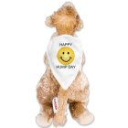 Personalized Happy Hump Day Camel AU31458-4649
