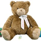 Girl Ribbon Teddy Bear - 23