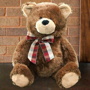 Plush Brown Teddy Bear GU4030263