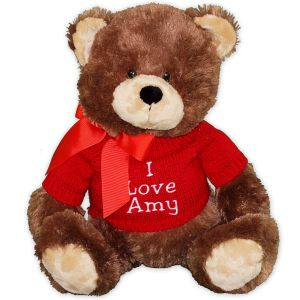Embroidered Message Teddy Bear - 20