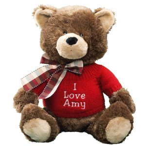 Embroidered Message Teddy Bear GU4030262-7406