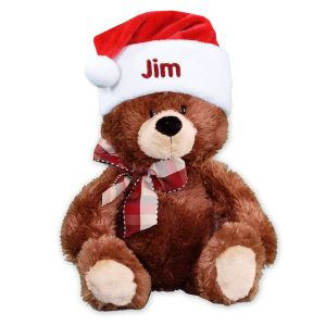 Embroidered Santa Hat Teddy Bear GU4030263-E0009