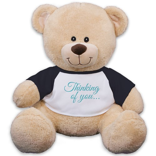 Thinking of You Teddy Bear 83000B17-8117