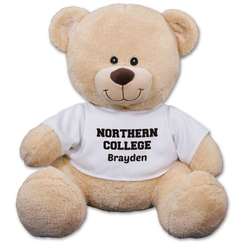 School Spirit Teddy Bear 8B83102259X